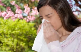 аллергия на пыльцу в августе