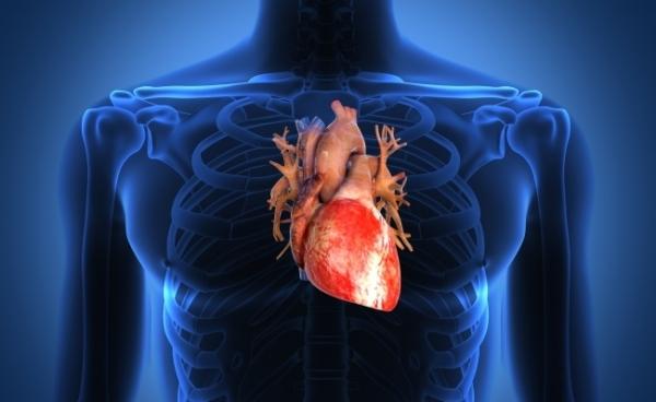 Стенокардия: причины, симптомы и лечение | MEDJOURNAL
