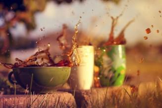 Рецепты травяных отваров для сопровождения капустной диеты и не только