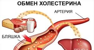 холестерин статины