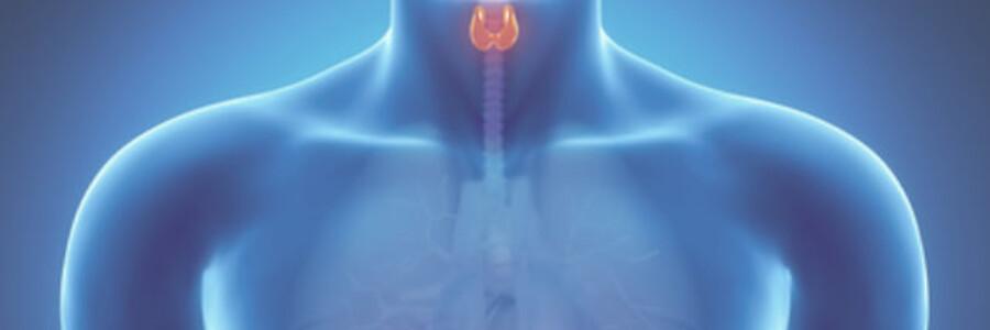 Рак щитовидной железы: классификация, диагностика, лечение