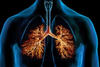 Бронхит: этиология, патогенез, классификация