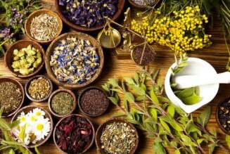 6 растений для лечения головной боли